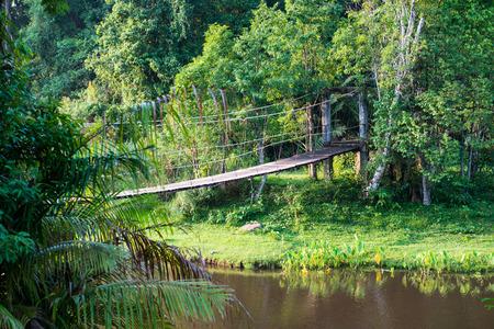 Landscape of khao Yai national park, Thailand photo