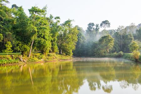 yai: Paesaggio del parco nazionale di Khao Yai, in Thailandia Archivio Fotografico