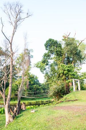 Rope bridge in national park, Thailand photo