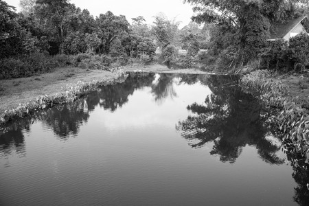 Landscape of national park, Thailand photo