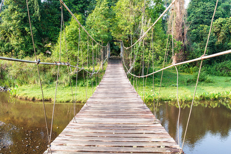 Rope bridge in national park, Thailand photo