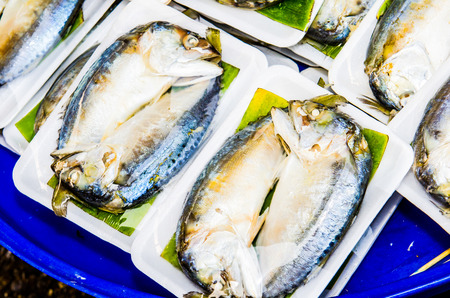 Fresh mackerel at seafood market, Thailand photo