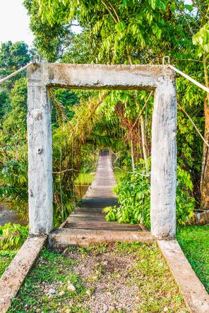 rope bridge: Rope bridge in national park, Thailand