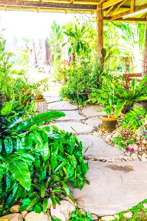 small garden: Walk way in small garden, Thailand Stock Photo