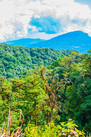 chiangmai province: Natural view at Chiangmai province, Thailand.