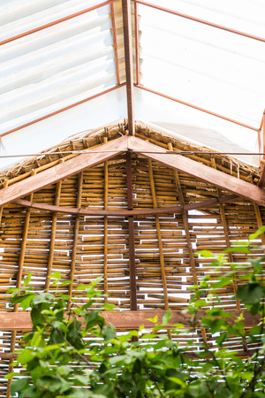 skylight: Skylight Roof and Native Wood Wall, Thailand.