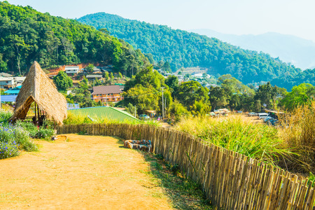 hilltop: Bamboo fence with soil walkway on Mon Jam hilltop at Chiangmai province, Thailand. Stock Photo