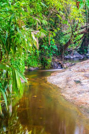 wang: Water Flowing at Wang Bua Ban waterfall in Natural Park, Thailand.