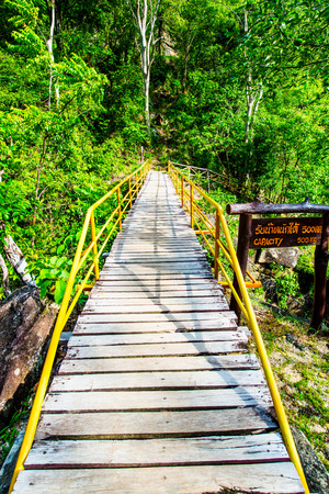 wooden bridge: Small wooden bridge in Ob Luang National Park, Thailand.