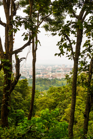 foreground: Chiangmai city view with tree foreground, Thailand. Stock Photo