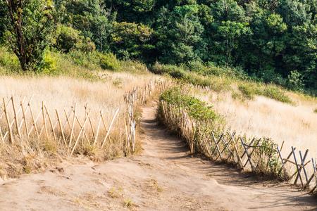 doi: Mountain Walkway to Kew Mae Pan, Thailand Stock Photo
