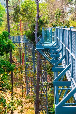 sirikit: Canopy Walkway of Queen Sirikit Botanic Garden, Thailand