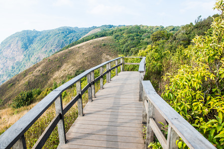 View Point of Kew Mae Pan in Doi Inthanon Natural Park, Thailand Stock Photo - 54676652