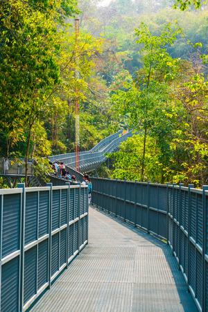 walkway: Canopy Walkway of Queen Sirikit Botanic Garden, Thailand