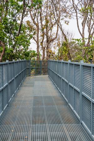 canopy: Canopy walkway of Queen Sirikit Botanic Garden, Thailand