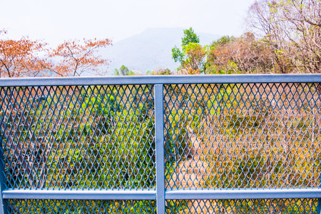 canopy: Perforated Fence of Canopy Walkway, Thailand Stock Photo