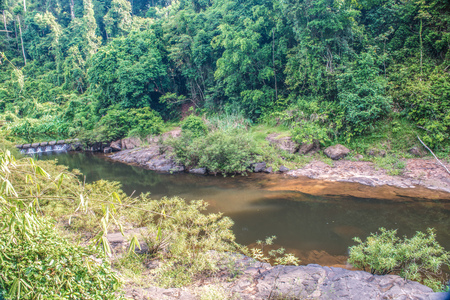 floodgates: Small weir in khaoyai national park, Thailand.