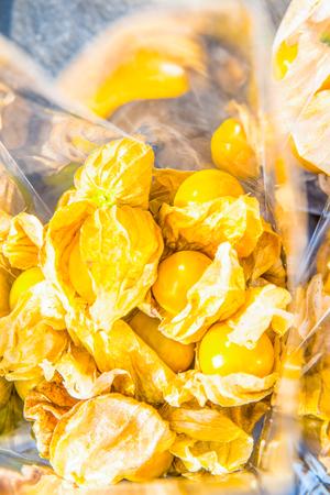 plastic bag: Cap Gooseberry fruit in plastic bag, Thailand