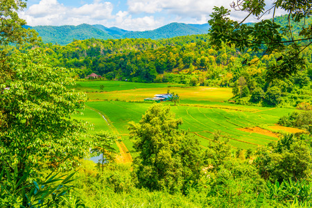chiangmai province: Agricultural view at Chiangmai province, Thailand,