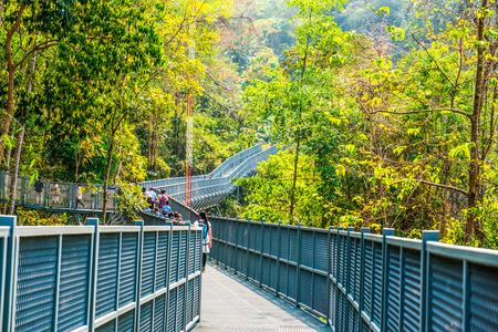 Canopy Walkway della regina Sirikit Botanic Garden, Thailandia