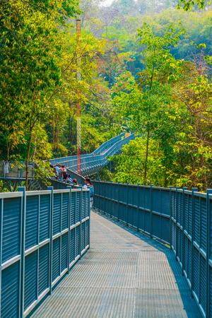 Canopy Walkway of Queen Sirikit Botanic Garden, Thailand