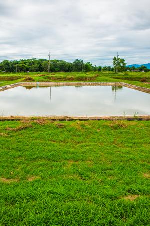fish pond: Landscape view of fish pond, Thailand. Stock Photo