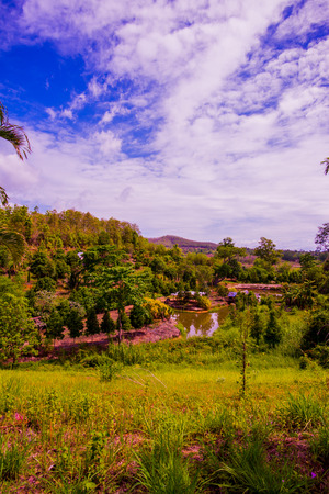 Country View at Chiangrai Province, Thailand