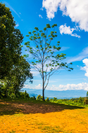 Natural view of Huai Nam Dang national park, Thailand. Stock Photo