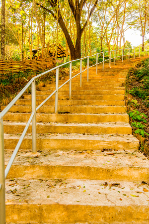 Concrete stair in national park, Thailand.