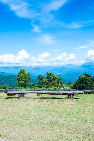 Logs for sitting at Huai Nam Dang national park, Thailand.