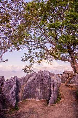 tang: View point of Doi Pha Tang at Chiangrai province, Thailand. Stock Photo