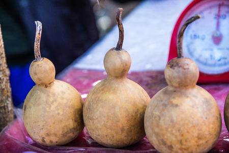 dried gourd: Dried bottle gourd, Thailand.