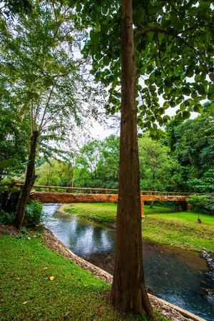 Landscape view of Phu Sang national park, Thailand.