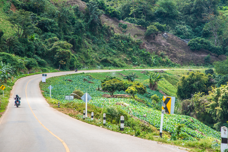 Road to Phu Chi Pa, Thailand. Stock Photo