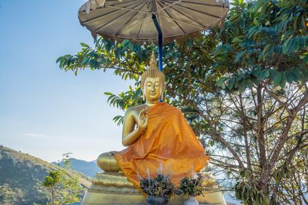 Golden Buddha on Hill at Doi Pha Tang, Thailand.