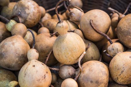 Dried bottle gourd, Thailand.