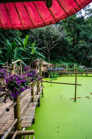 Landscape view of Mae Fah Luang garden, Thailand.