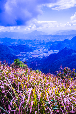 fa: Top view on Phu Chi Fa at Chiangrai province, Thailand.