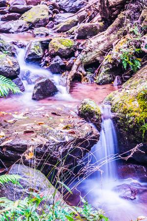 wonderful thailand: Little stream at Champa Thong waterfall, Thailand. Stock Photo