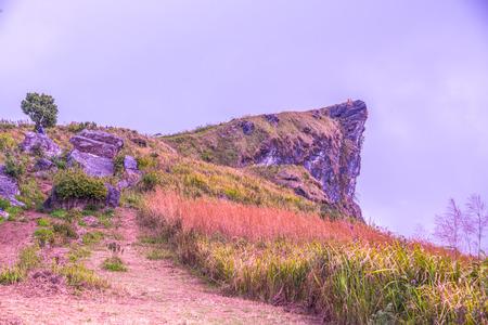 Mountain view of Phu Chi Fa at Chiangrai province, Thailand.