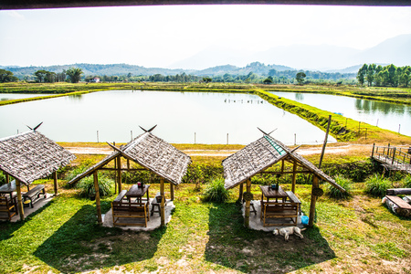 Fish pond with small huts in Thai country, Thailand. Stock Photo
