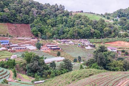 Village on mountain at Mon Cham, Thailand.