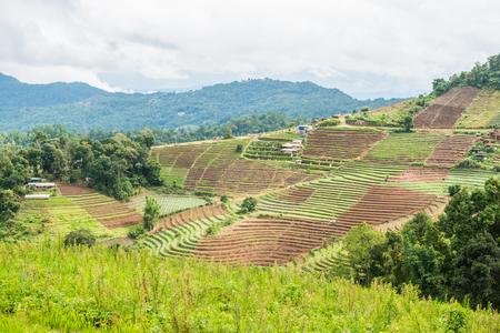 Mountain view at Mon Jam view point, Thailand. Stock Photo