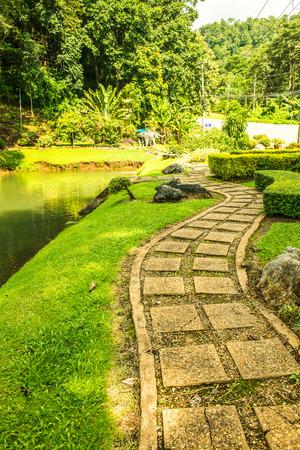 Public park at Samoeng district, Thailand.