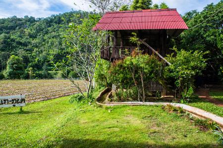 Thai native house in Chiangmai city, Thailand.