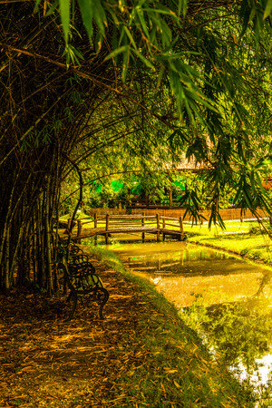Park in Cherntawan International Meditation Center, Thailand.