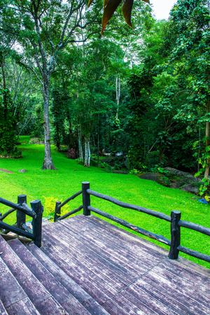 Wooden terrace in park, Thailand.