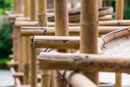 Dry bamboo, Thailand. Stock Photo