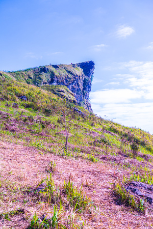 Phu Chi Fa View Point in Chiangrai Province,Thailand Stock Photo
