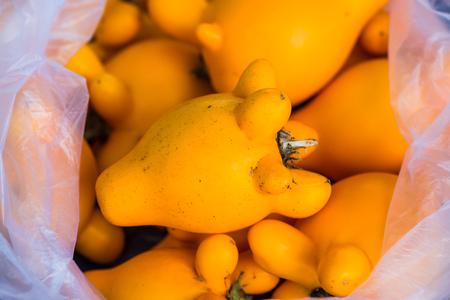 Nipple fruit in plastic bag, Thailand.